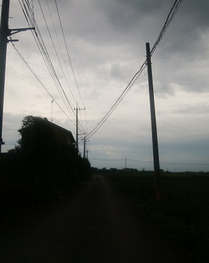 R173_3